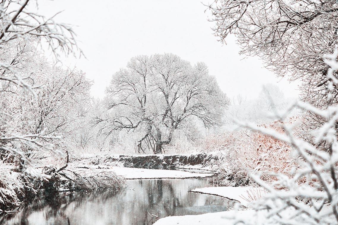 Зима 2019 подарила красивые пейзажи в Приморье