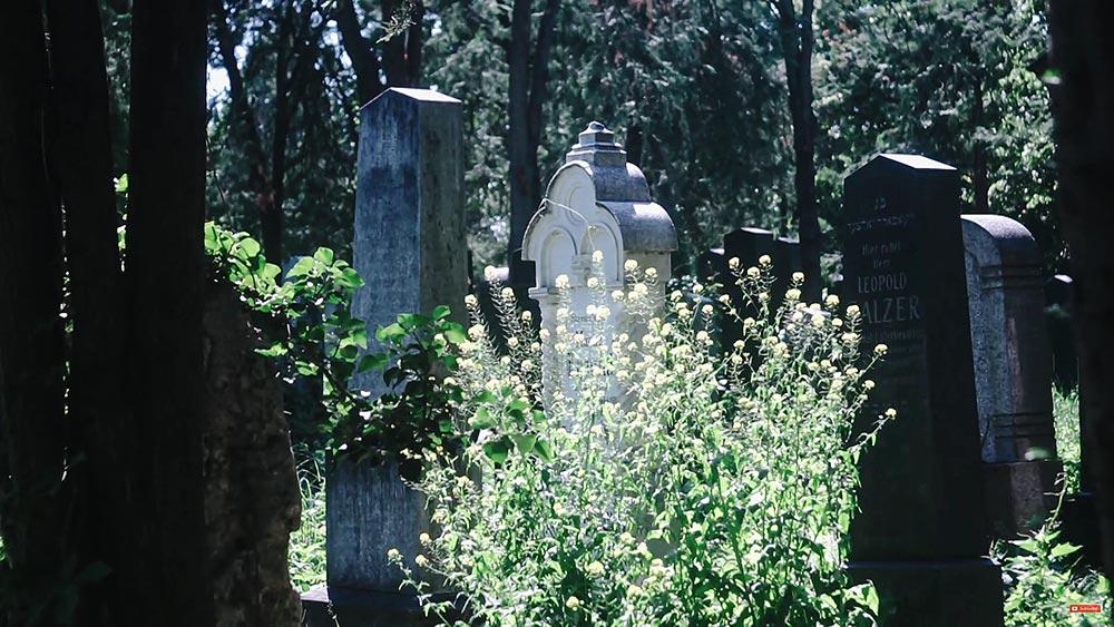 "Съёмка видео на кладбище, детализация у объектива от Vest Pocket Kodak всё-таки хромает, хотя цветопередачу впору назвать ""киношной"""