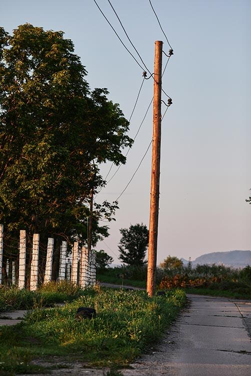 Деревянный столб ЛЭП в Золотой Долине, Лётный гарнизон - последствия наводнения 27-30 августа в Приморье