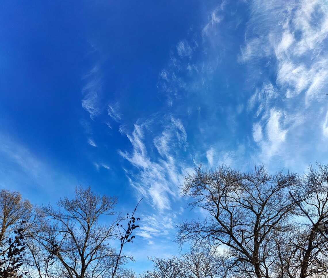Зимнее небо с облаками и деревьями   фон с небом, облаками и деревьями для рабочего стола