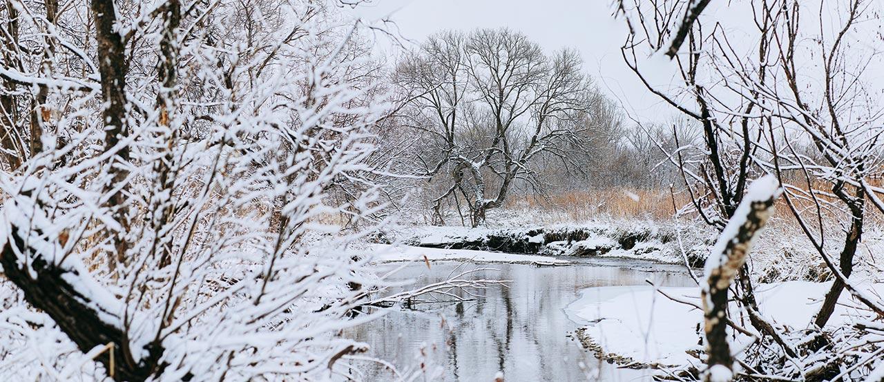 Панорама заснеженной реки фото Приморский край