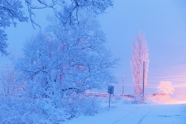 Село Золотая Долина Приморский край фотография зимней улицы в снегу, март 2020