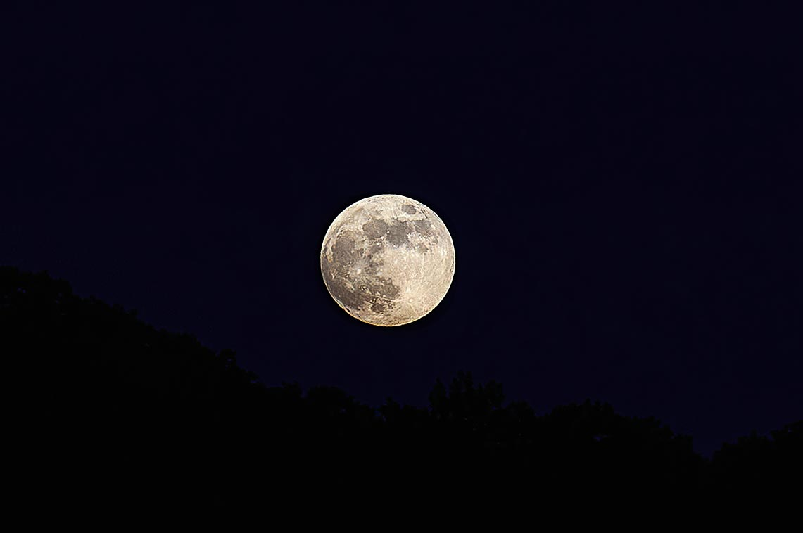 Полнолуние в июне 2020 года - фото Луны над ночным лесом в Приморье (фотограф Олег Мороз).