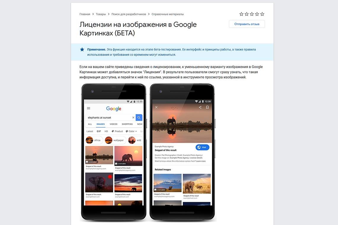 Лицензия на изображения в Google картинках (пример и объяснение)
