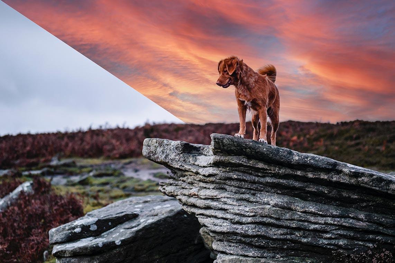 Как автоматически заменить небо на фото с помощью Photoshop 2021