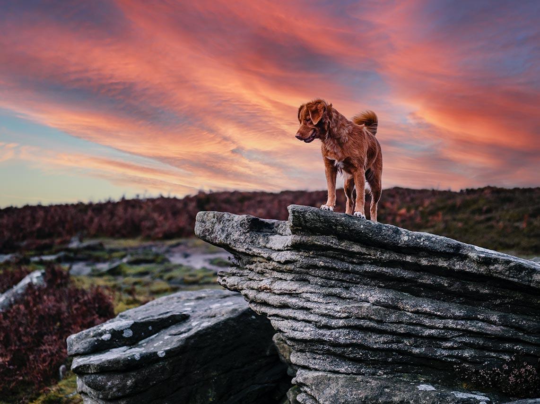 Как заменить небо на фото с помощью Photoshop - пример готового результата