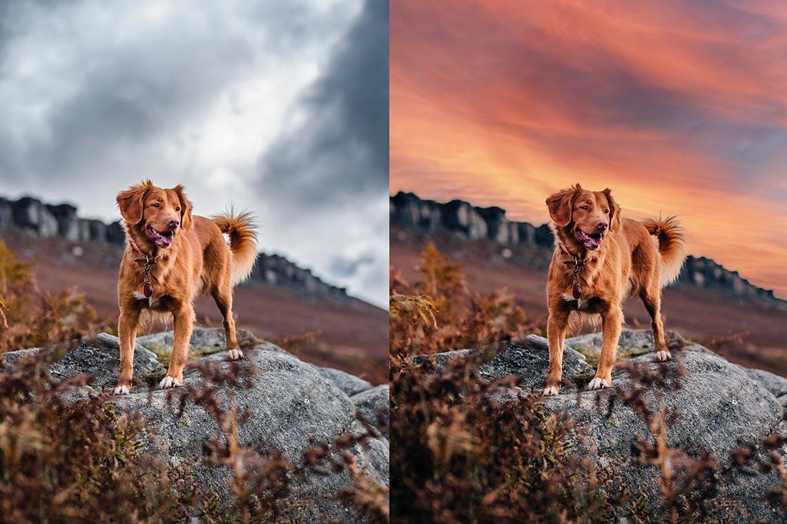 "Обзор инструмента ""Замена неба"" (Sky Replacement) в Adobe Photoshop 2021 - на картинке пример фото до и после обработки"