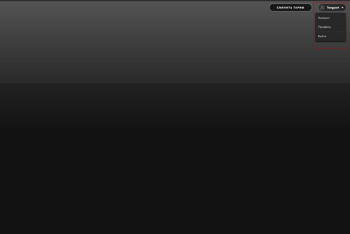Как изменить имя пользователя в Spotify на ПК (инструкция)