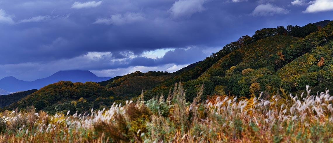 Осенние пейзажи для печати, фотошопа, соцсетей и рабочего стола (фотограф Олег Мороз)