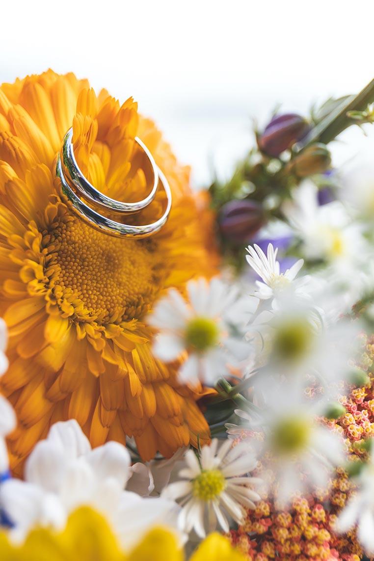 Кольца с цветами крупным планом (макро фото)