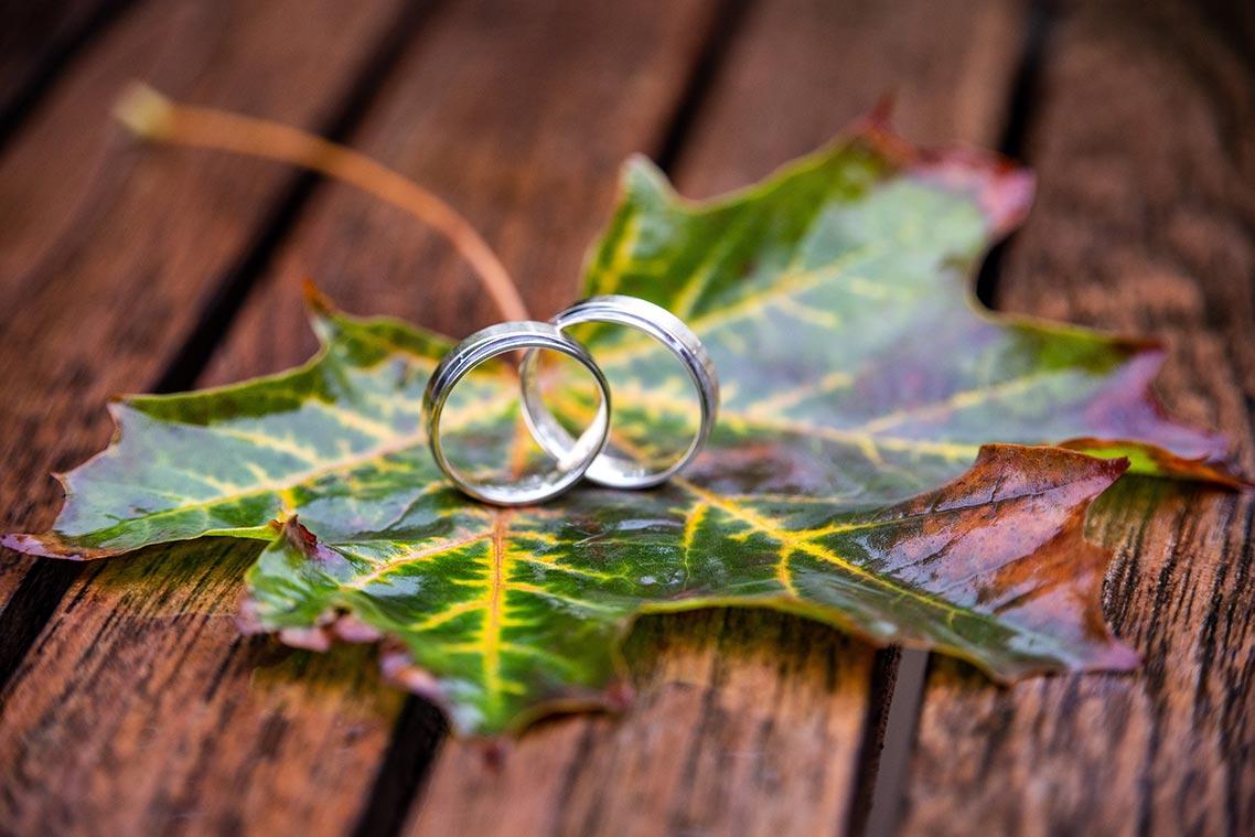 Свадебные кольца на осенней листве и деревянной скамейке