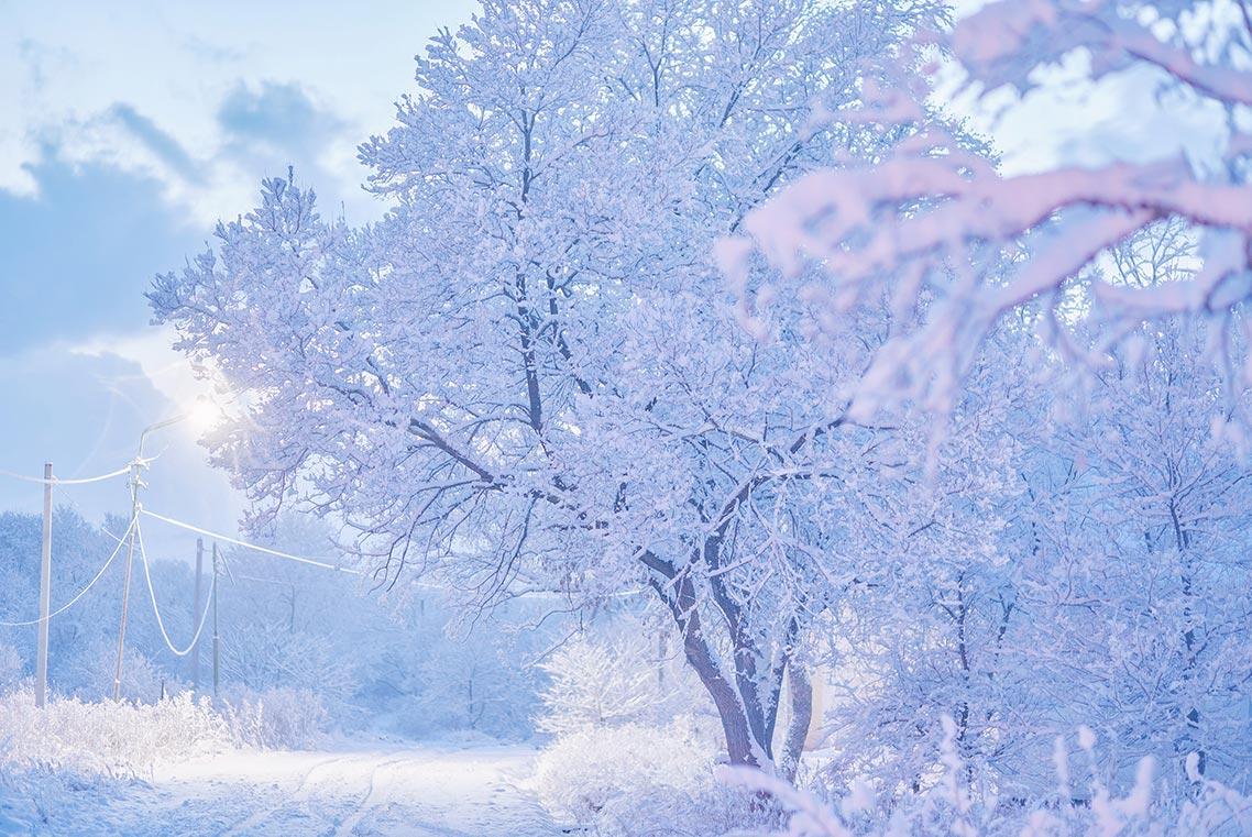 Зимняя русская дорога - съёмка в голубой час