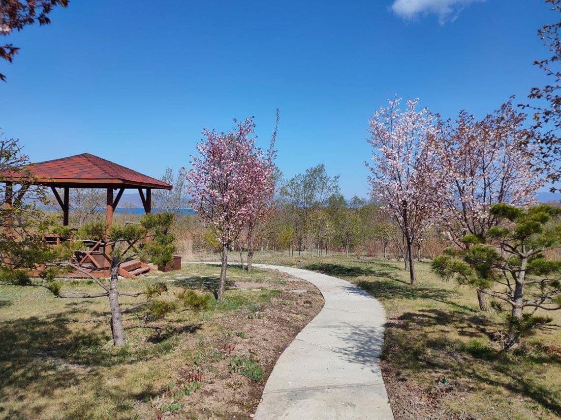 Японский сад Энси в городе Находка (пример фото цветущего сада)